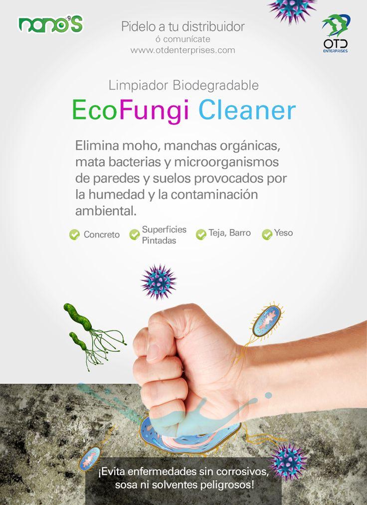 Eco Fungi Cleaner. Elimina moho, manchas orgánicas, mata bacterias y microorganismos de paredes y suelos provocados por la humedad y la contaminación ambiental.