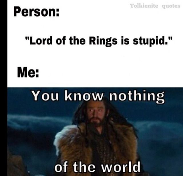 "Or if someone said "" the hobbit is stupid."" Or ""I didn't like the movie because it wasn't exactly like the book."" Get over yourself :P"
