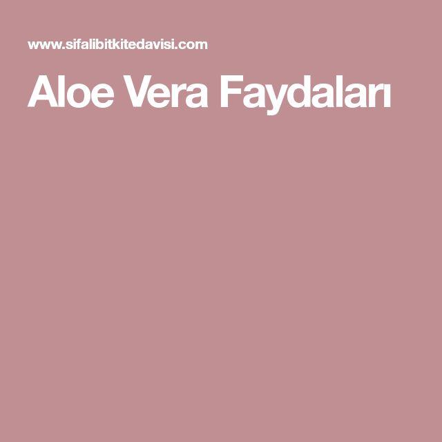 Aloe Vera Faydaları