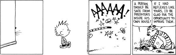 Calvin y Hobbs Navidad tiras