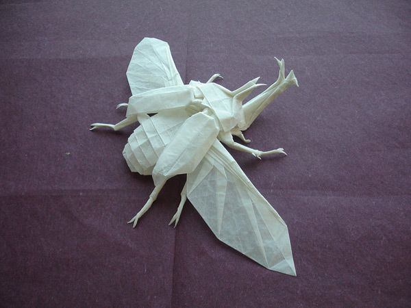 Shuki Kato. It's folded from a single 22″ square of tracing paper and has a nearly 10″ wingspan.