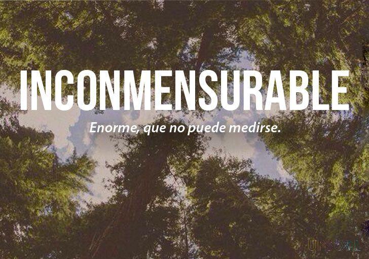 Inconmensurable: Enorme, que no puede medirse. | Las 20 palabras más bonitas del idioma español (Pt. 2) -Upsocl