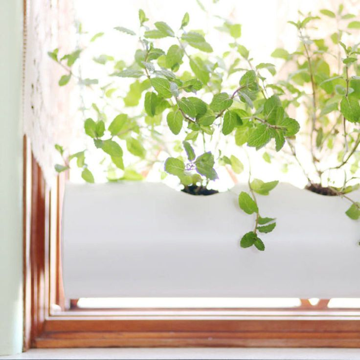 The key to successful, year-long herb growth is simple: Light. But even if you have a free window, figuring out how to integrate your plants can be tricky. We love A Beautiful Mess's solution, which uses a four-inch PVC pipe and just a little prep time to create a picture-perfect planter, fitted to your window.