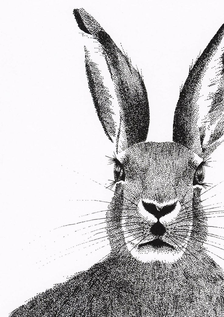 Limited Edition Print of The March Hare // Wall Art // Modern