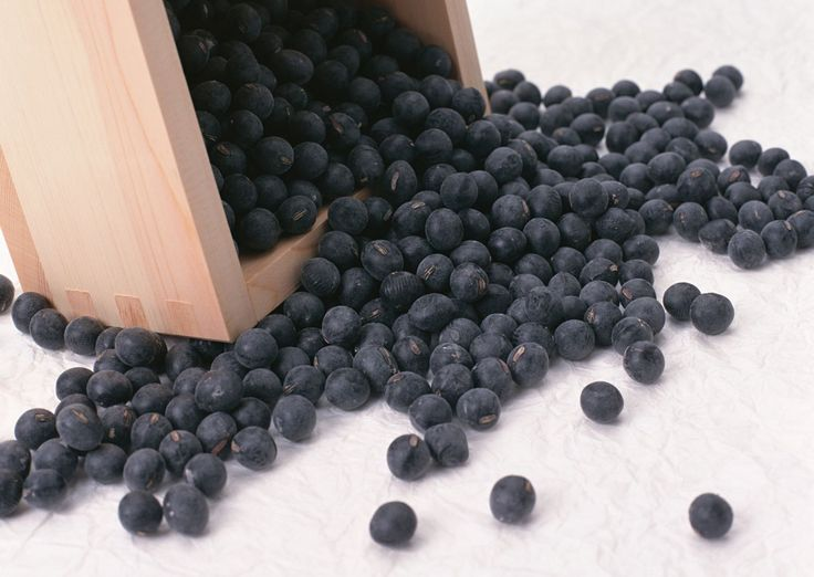 Are Black Soy Beans Different from Other Soy Beans? Find Out
