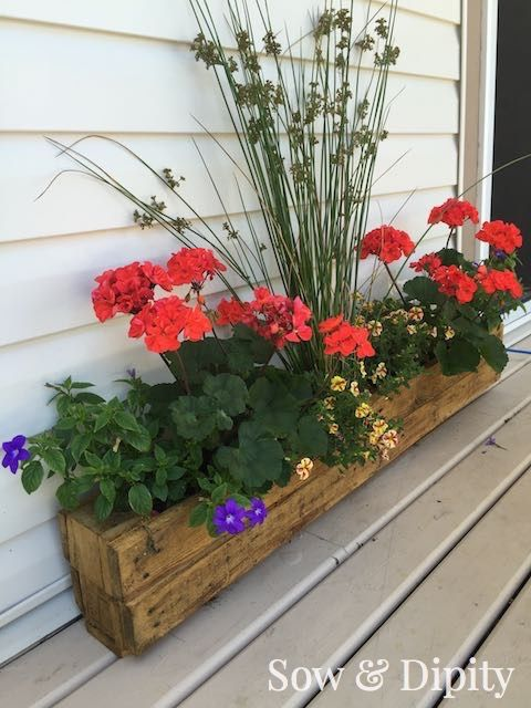 Turn a pallet into a planter! This space saving easy to do Pallet Trough Planter is perfect for a small space garden.
