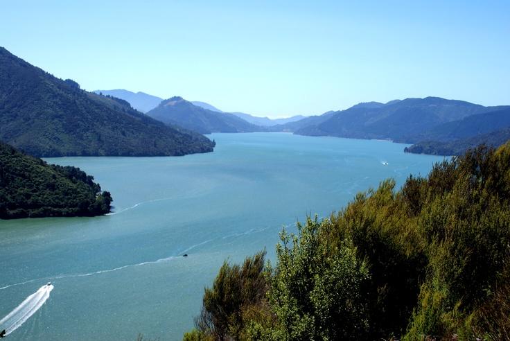 Nieuw Zeeland - Marlborough Sounds
