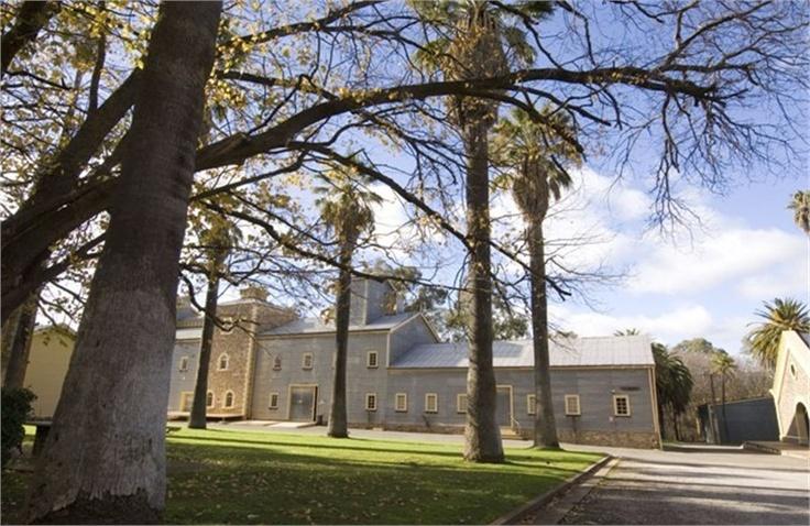 Seppeltsfield vineyard wedding venue