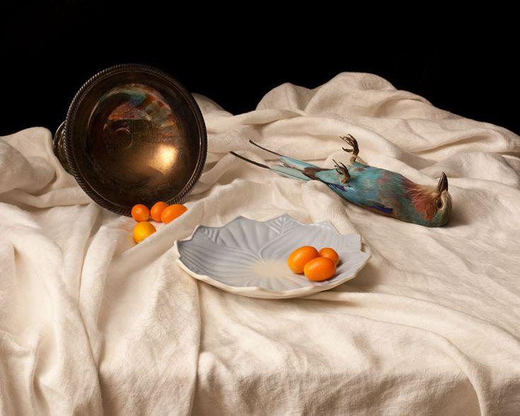 "Sarah Cusimano Miles, ""Lilac-Breasted Roller (Coracias Caudate) with Kumquats"""