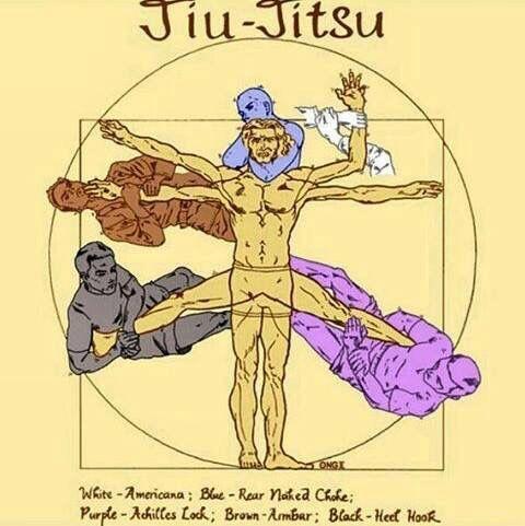 Les 25 Meilleures Id Es De La Cat Gorie Ju Jitsu Sur