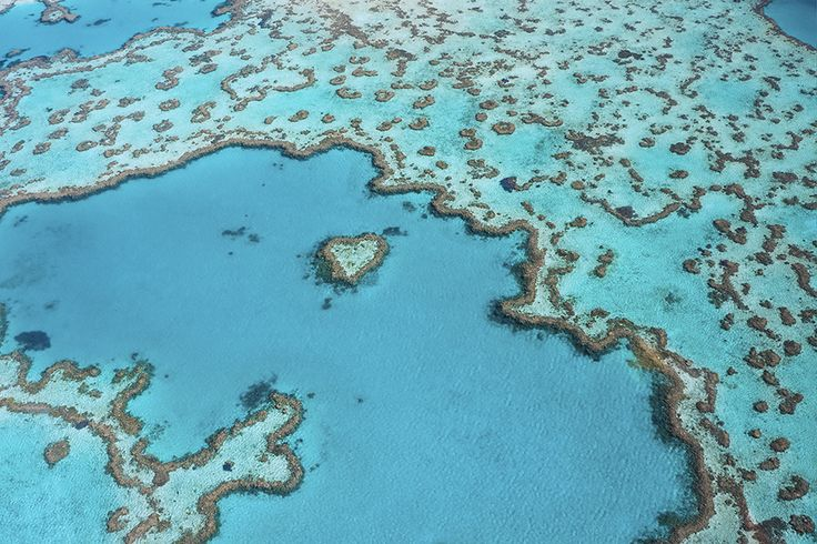 Explore the Great Barrier Reef from Hamilton Island #escapesnaps