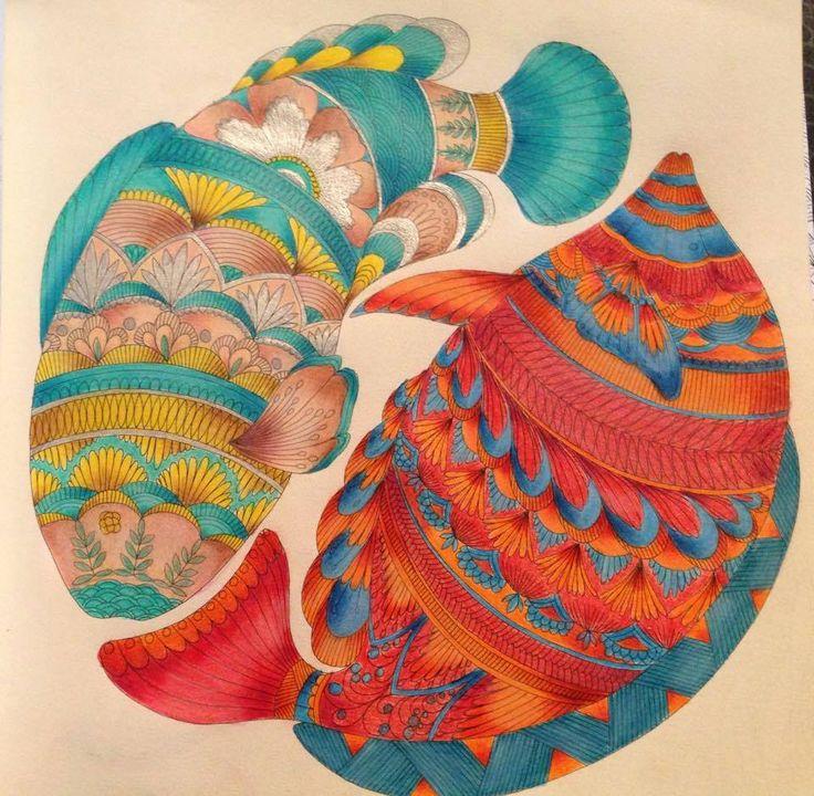 Millie Marottas Animal Kingdom Adult ColoringColoring BooksColouringDoodle