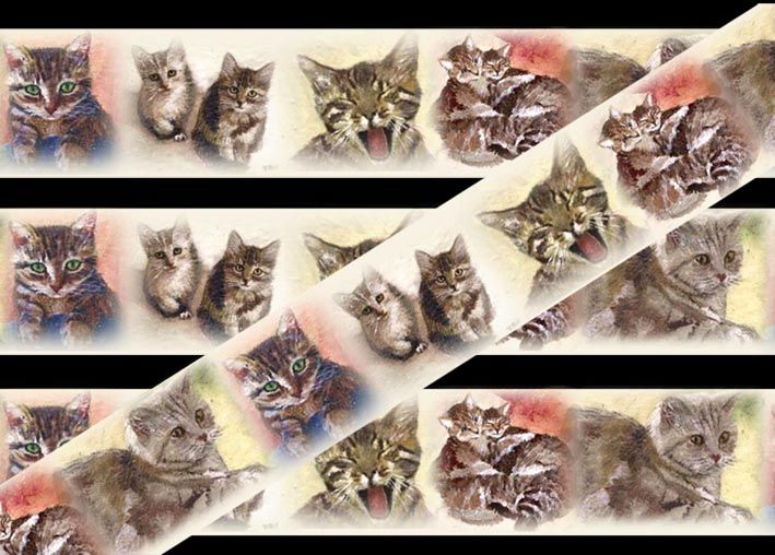 wallpaper border, cats cat wallpaper borders Ideas for