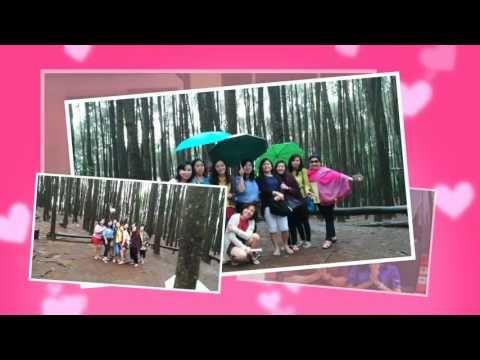 Wisata Religi Kristen Katholik Jogjakarta Yogyakarta & Jawa Tengah: Video VLOG  HUTAN PINUS MANGUNAN YOGYAKARTA