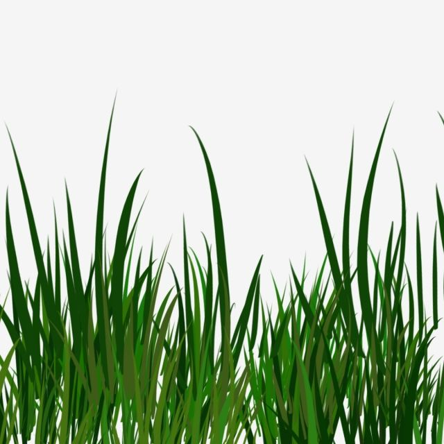 Millions Of Png Images Backgrounds And Vectors For Free Download Pngtree Grass Vector Grass Clipart Cartoon Grass
