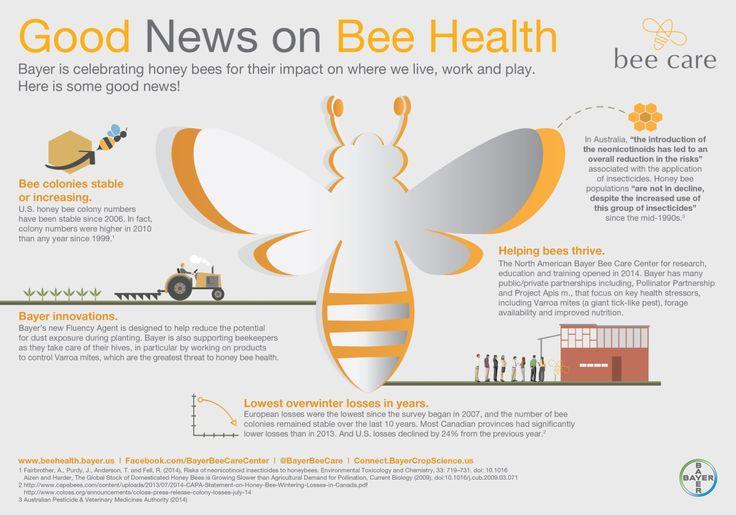 Saturday Is Nationalhoneybeeday Honey Bees Are Important