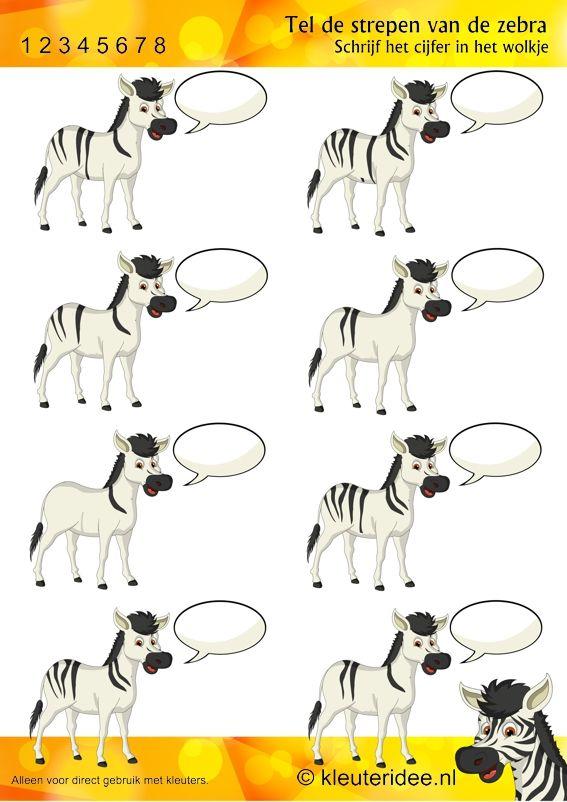 Tel de strepen van de zebra, rekenen voor kleuters bij thema dierentuin, juf Petra van Kleuteridee, count the stripes of the zebra, free printable.