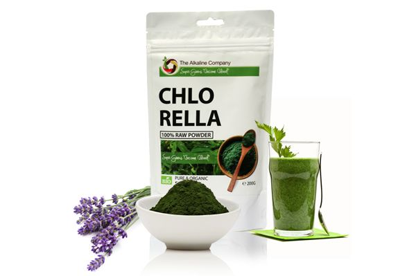 Chlorella alga por, organikus, 100%