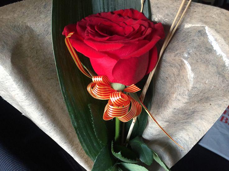 Sant Jordi #roses #flowers #tradition