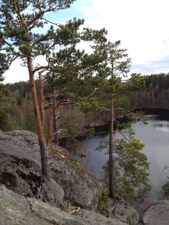 Ястребиное озеро -- с палатками