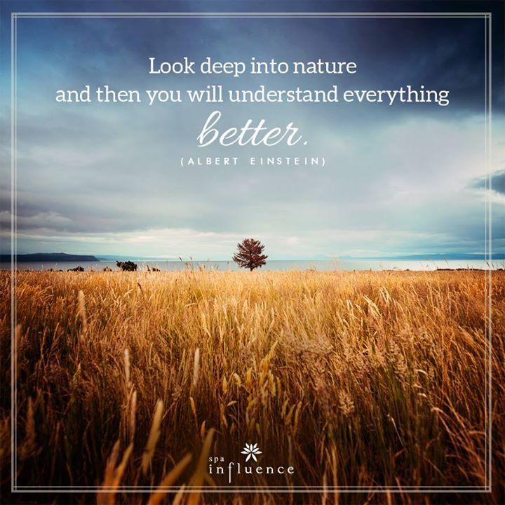 Leave behind the daily hustle and bustle, and enter the enthralling world of nature. #spa #relax #life #nature #quotes #inspiring