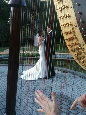 View of the bride & groom through the harp strings at the Rose Garden, Leu Gardens, Orlando