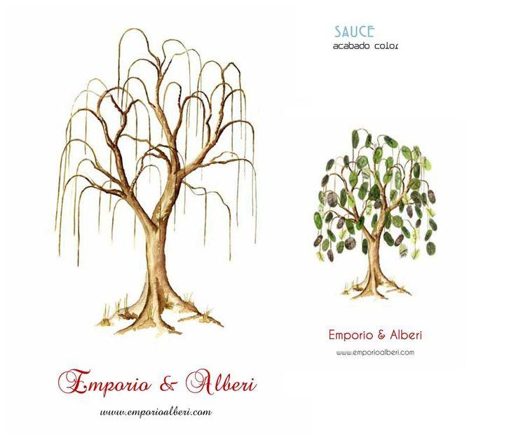 Sauce. Menos de 40 huellas. Cuadro de huellas / Árbol de huellas www.emporioalberi.com