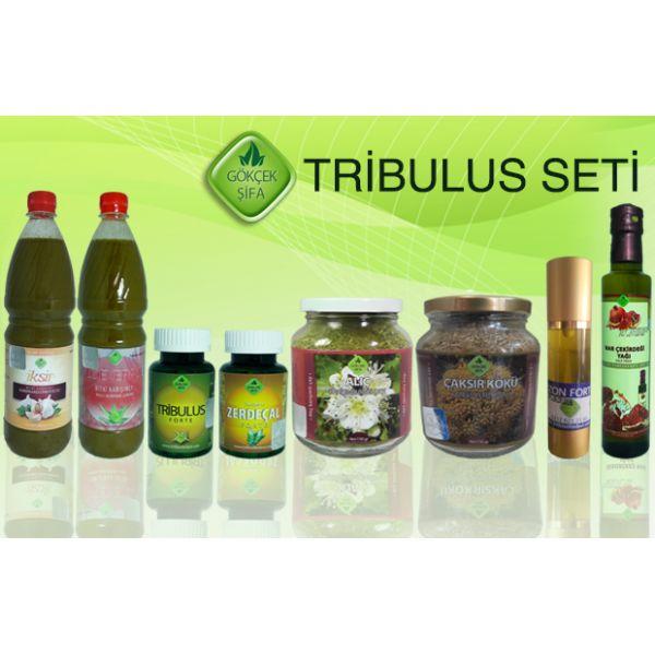 Tribulus Seti - Doğal Tedavi - İbrahim Gökçek - Alternatif Tıp - Bitkisel Ürünler - İksir - Alovera - Bitkisel Sağlık Ürünleri - Şifalı Bitkiler - Bitkisel Setler - Bitkisel İlaçlar - Herbalist İlaç Değil Bitkisel Gıda Takviyesidir. www.alternatiftip.com.tr
