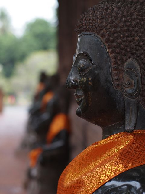 garner buddhist personals This weekend's kids & family activities in bronx  by directories editor - weekly september 20, 2017 share these events have already taken place.