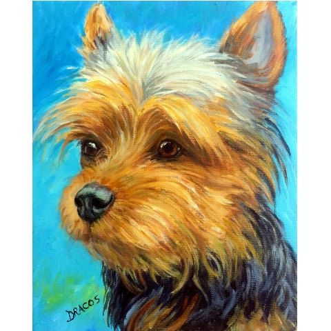 Yorkshire Terrier Dog Art Print by Dottie Dracos by DottieDracos, $12.00