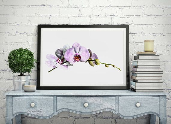 A Printable digital download of a beautiful pink orchid. This still life photographic piece is a DIGITAL DOWNLOAD for you to print at home or at your local print shop or photo lab. It is highly recommended having your download printed at a professional photo lab to ensure a high
