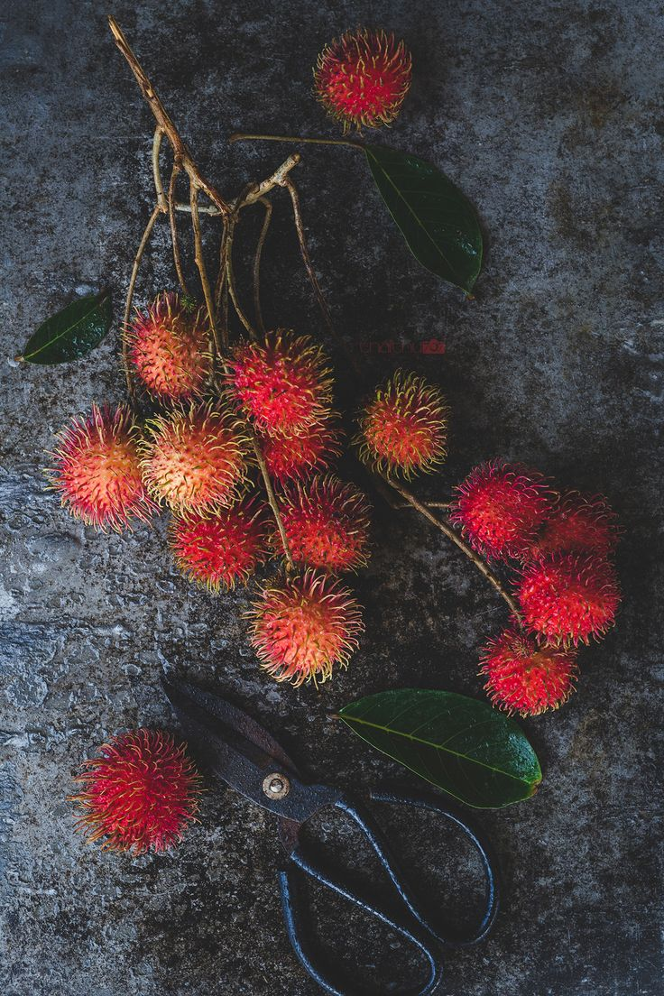 Fresh rambutan fruits Fresh rambutan fruits from Vietnam