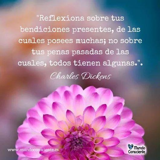 ... Reflexiona sobre tus bendiciones presentes de las cuales posees muchas; no sobre tus penas pasadas, de las cuales todos tienen algunas. Charles Dickens.
