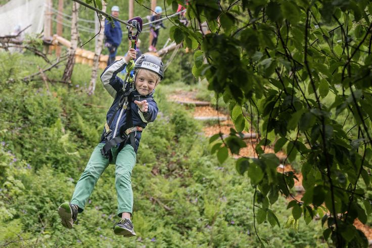Experience Norway from the treetops!