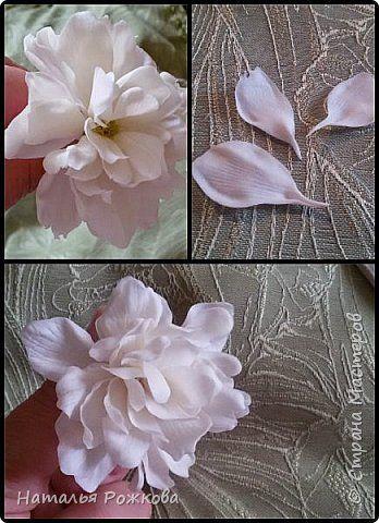 Я думаю все мастера занимающиеся лепкой обращали внимание на этот прекрасный белый цветок называющийся чубушник,или жасмин.Его соцветия напоминают белые,кучевые облака.Я была в их числе и наконец решила воплотить эти облака в веточки прекрасных,белоснежных цветов. Итак,приступаем  фото 19