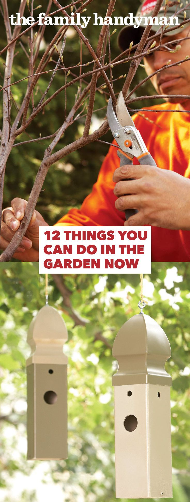 The calendar might read winter but spring is just around the corner. Get your garden ready now with a few things that are easy to do in winter.