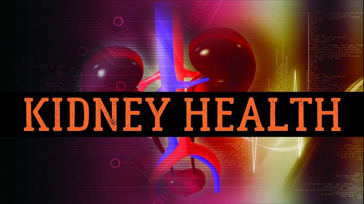 20 Best Foods for Kidney Health