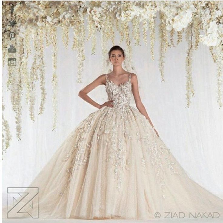 1000 ideas about arabic wedding dresses on pinterest for Ziad nakad wedding dresses prices