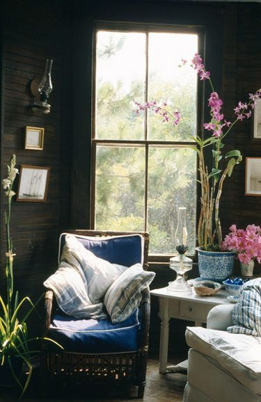 This cozy reading nook is all about the window behind the reading chair and the giant indoor plants!