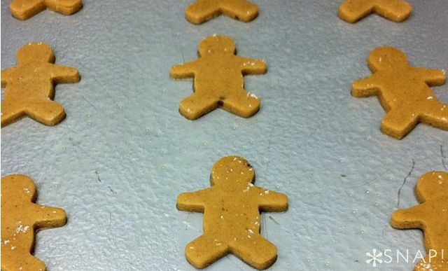 Easy Gingerbread Cookie Recipe | SNAP!