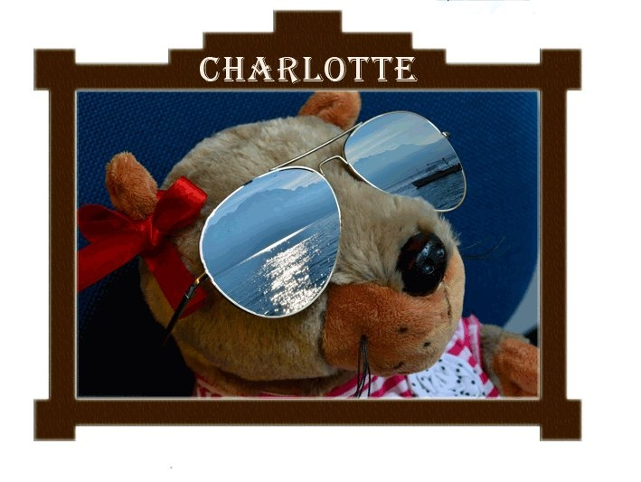 I'm Charlotte, the Groundhog from #Montreux Riviera  Follow me on facebook!