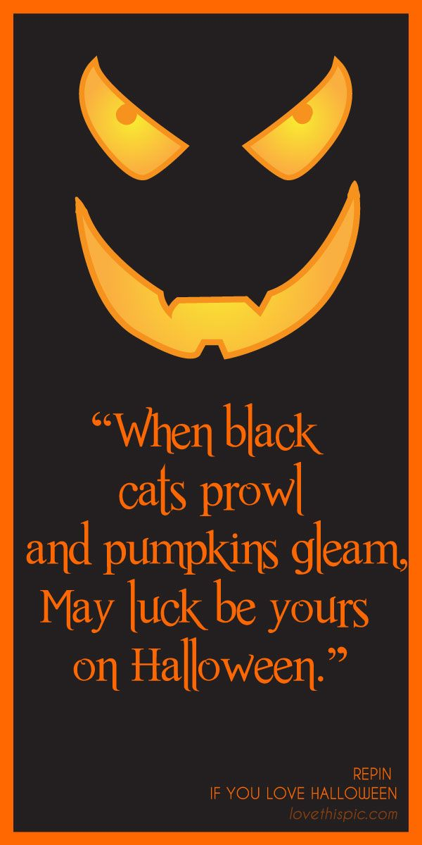 Pumpkinu0027s Gleam Quotes Quote Scary Spooky Halloween Pinterest Pinterest  Quotes Horror Pumpkins Halloween Quotes Black Cats Pictures