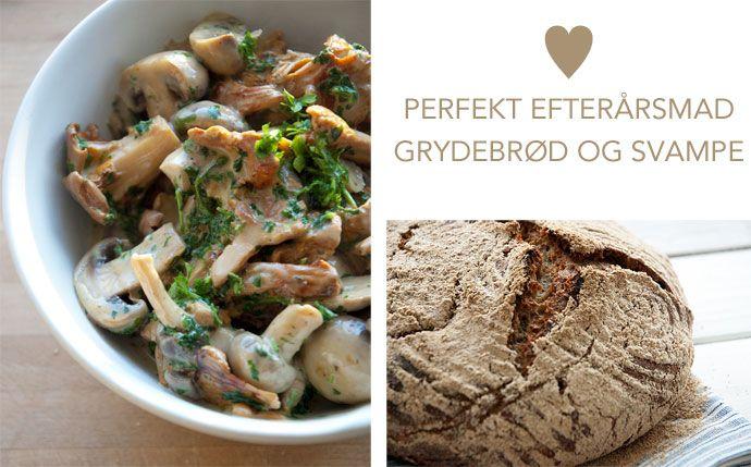Perfekt efterårsmad – grydebrød og ristede svampe i fløde