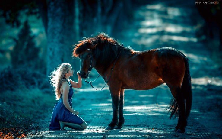 Kobieta, Koń, Droga, Las, Przyjażń