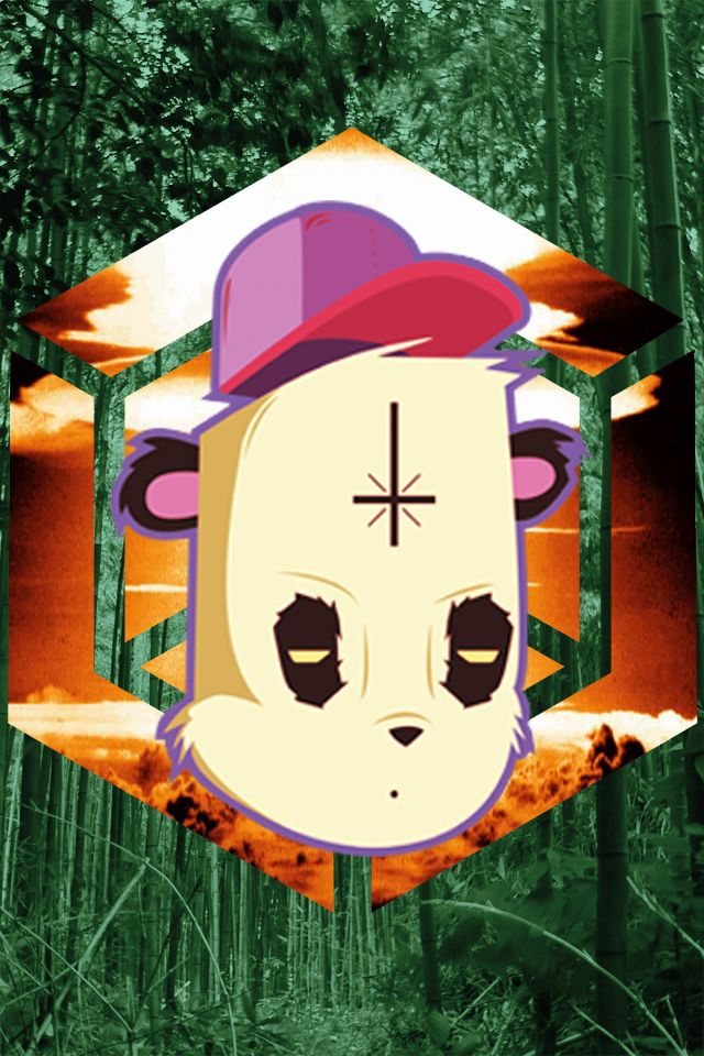 A digital illustration made whit illustrator cc and photoshop https://www.facebook.com/pandaillustrations  #panda #digital #illustration #cap #bamboo