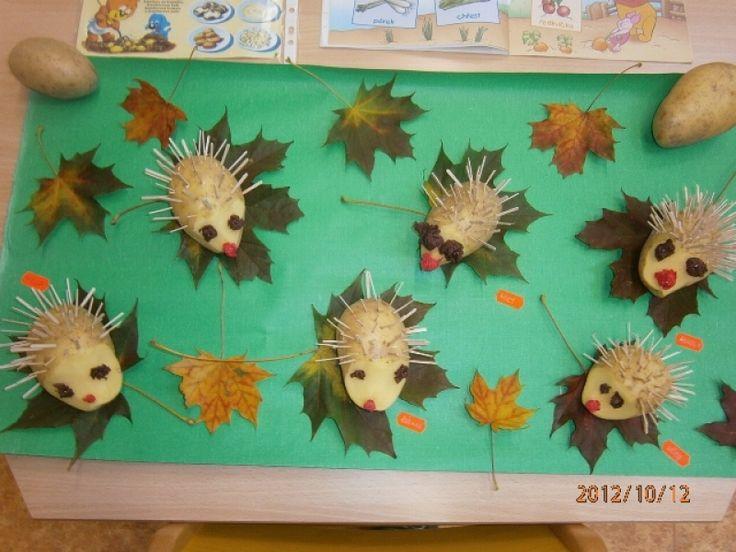 Bramboroví ježci