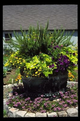 Container garden ideas: Gardens Ideas, Container Gardens, Decks, Country Gardens, Whiskey Barrels Planters, Reading Corner, Flower Gardens, Herbs Gardens, Backyard