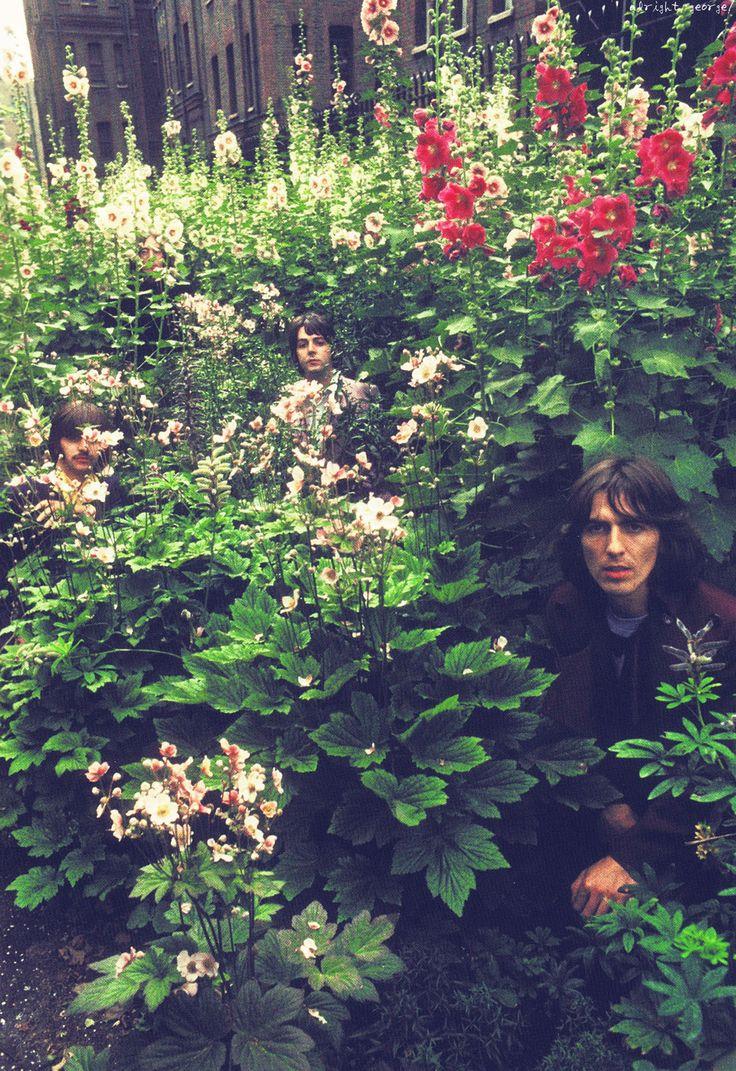 Ringo, John, Paul e George fotografados por Linda McCartney em 1968, na casa de campo do casal Paul e Linda nos arredores de Londres. Veja mais em: https://semioticas1.blogspot.com.br/2012/05/travessia-em-abbey-road.html