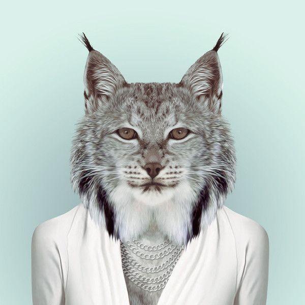 artistic cat photos - Google Search