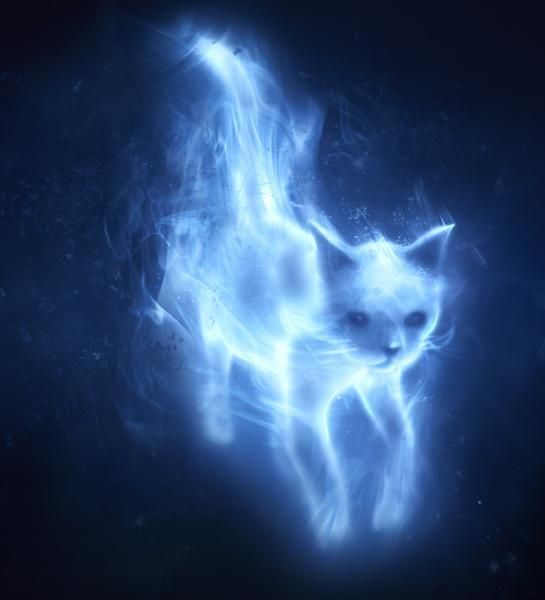 patronus cat | Mentioned in conjunction with Snape's Patronus. It was also the female ...